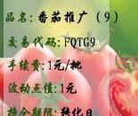 寿光果菜品种权番茄推广(9)